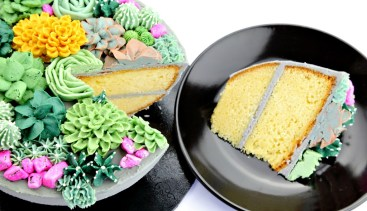 Succulent-Cake-8-yt